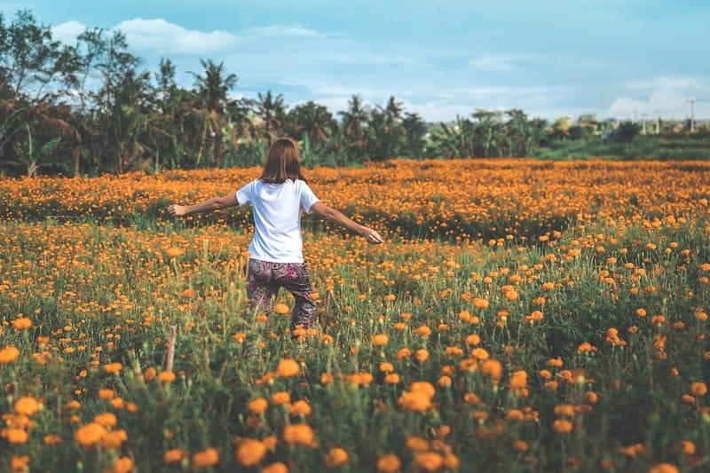 Levensverzekering Orange Insurances
